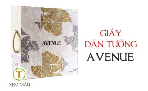 giay-dan-tuong-avenue